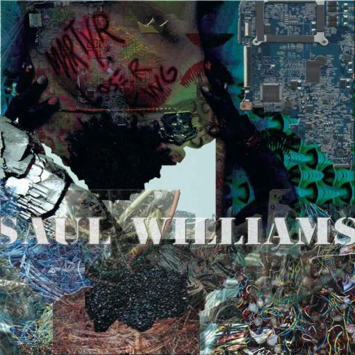saul williams the noise came from here